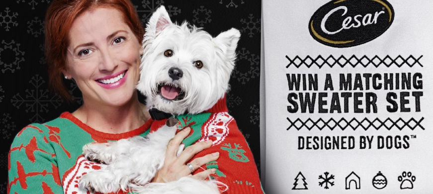 CESAR Twinning Holiday Sweater Promotion