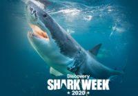 DISH Ultimate Shark Week Fan Sweepstakes