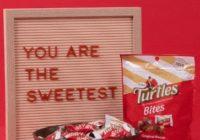 Star Brands Demets Turtles World Kindness Day Giveaway