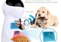 Bauer Magazine Woman World Iseebiz Automatic Cat Feeder 3L Pet Food Dispenser Sweepstakes