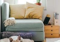 Innovation Brands Home Refresh Giveaway